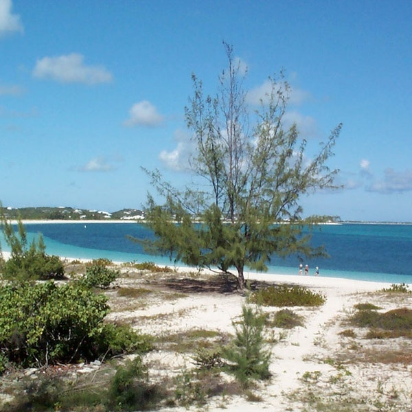 Coral Gardens Resort Providenciales Turks And Caicos Islands Afar