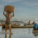Seaweed Farm on Nusa Lembongan, Indonesia