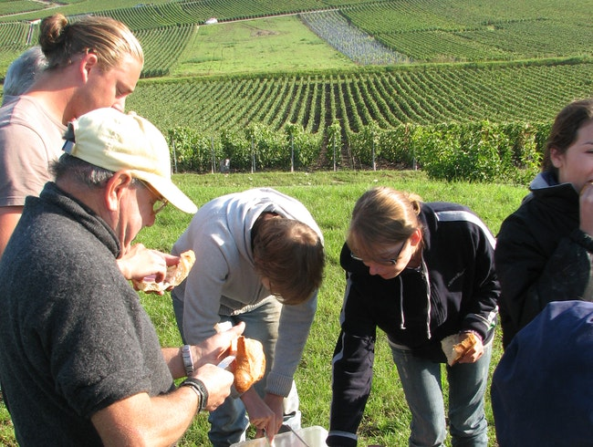 Morning Break at the Champagne Harvest - With Wine, of Course