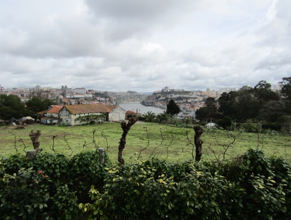 Fine-dining with in a historic wine cellar with a view at Vinum Vila Nova De Gaia  Portugal