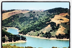 Take a Walk in Tilden Regional Park