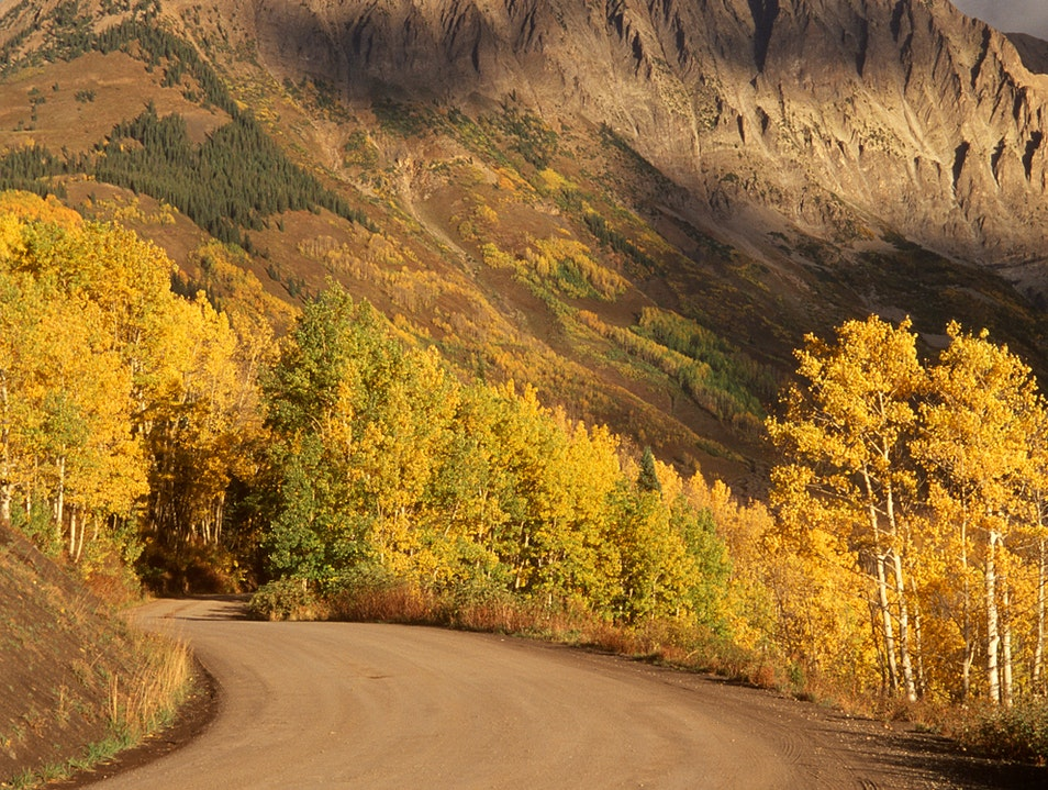 Gothic Mountain in Autumn Crested Butte Colorado United States