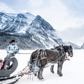 Brewsters Lake Louise Stables & Dance Barn   Canada