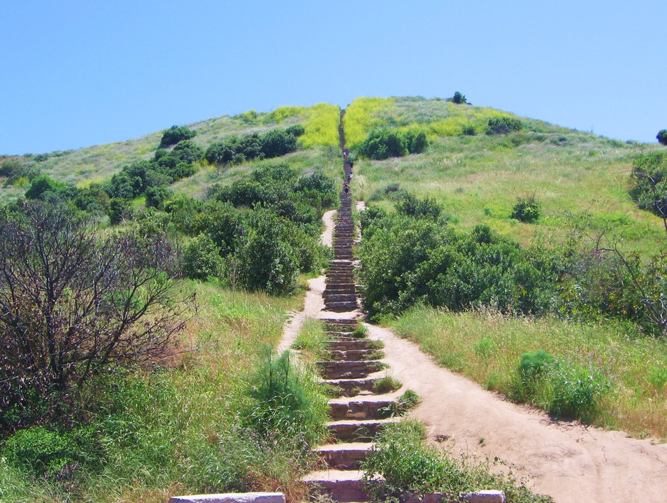 Climb the Death Stairs for a Panoramic View Culver City California United States
