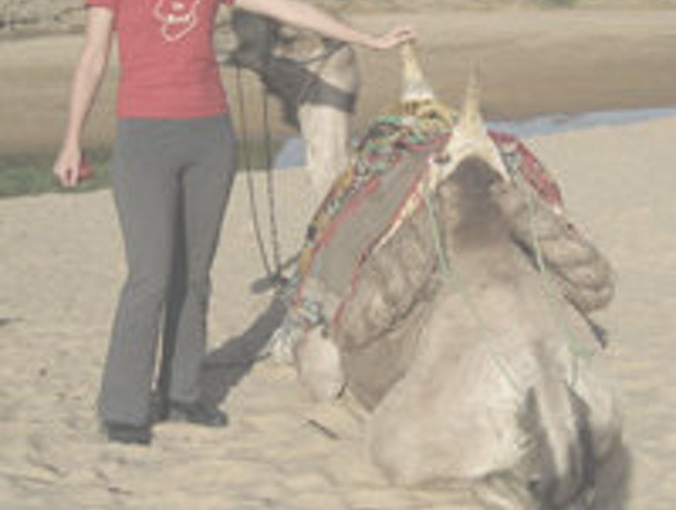 camel riding near n'djamena N'djamena  Chad