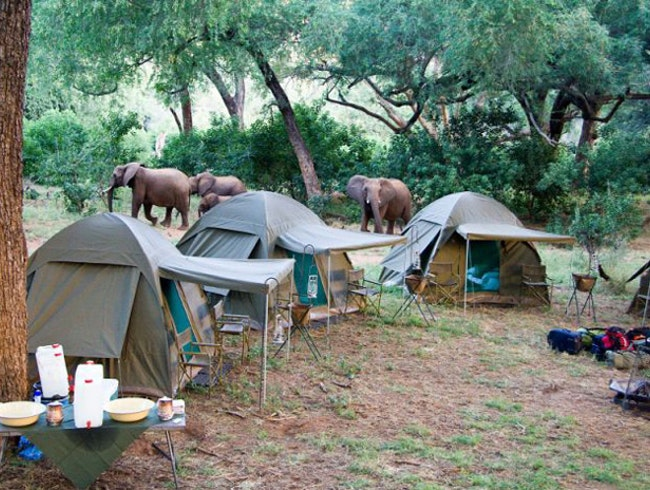Pafuri Camping, Kruger National Park - South Africa