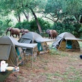 RETURNAfrica Pafuri Camp Kruger Park  South Africa