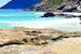 An Awesomely Remote Beach in an Old Dutch Colony Cape Town  South Africa