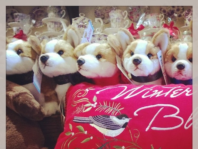 Nothing says Christmas like a Tea Room with Live Doves, Plush Corgis, and Fine Tea