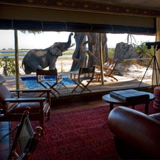 Zarafa Luxury Camp (Wilderness Safaris)