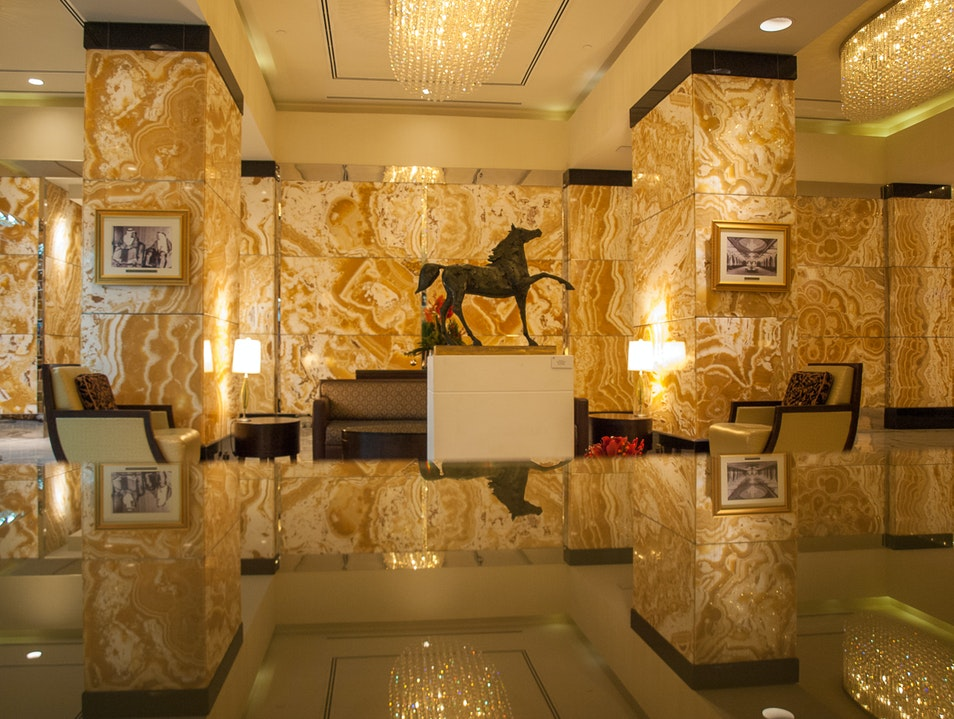 Elegance Greets You at the Door Abu Dhabi  United Arab Emirates