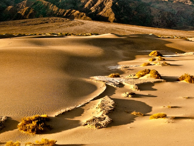Rippling Sand Dunes in Death Valley