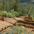 Manitou Incline Trail, Manitou Springs Fowler Colorado United States