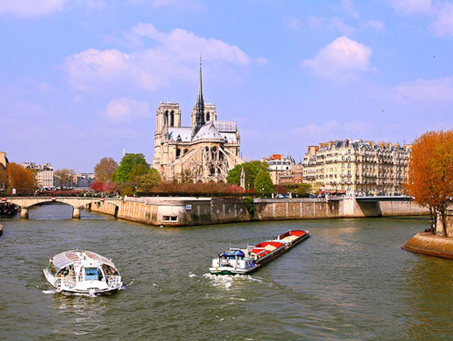 Drinking in the View of Notre Dame on La Seine Riverbank