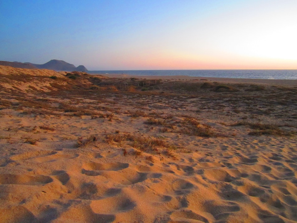 Coast of colors, whales, and food so good it hurts Todos Santos  Mexico