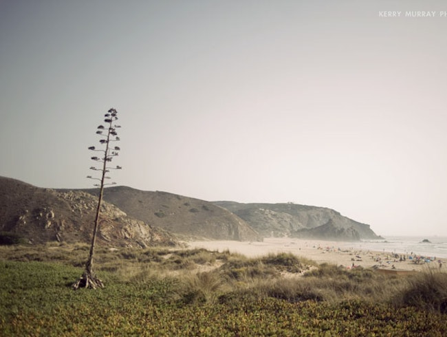 Surfing Portugal´s south-west coast