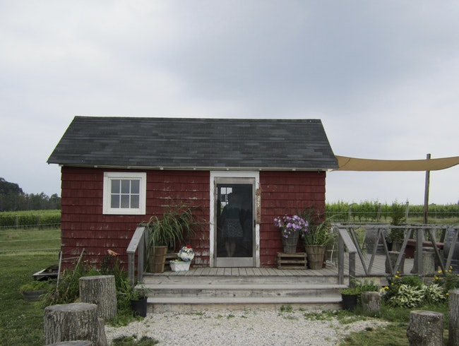 A small Winery on the North Fork of Long Island