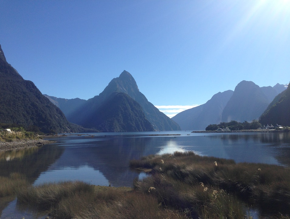 Morning fiords at high tide Milford Sound  New Zealand