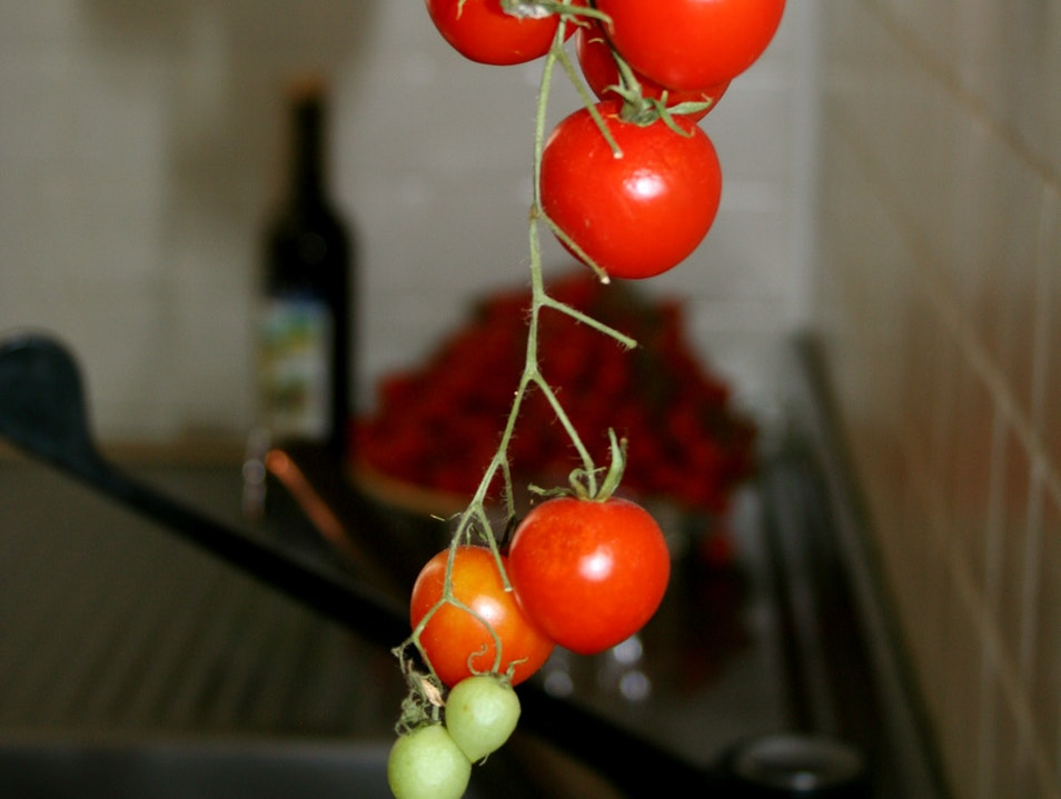 The Beauty of Italian Tomatoes