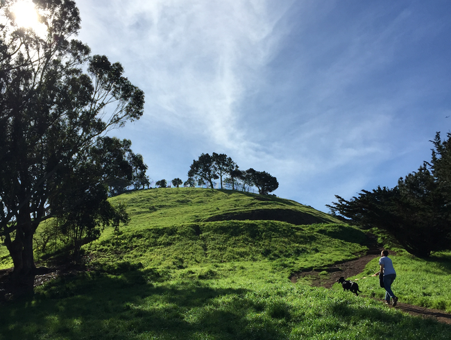 Race to the top of Bernal Heights Park