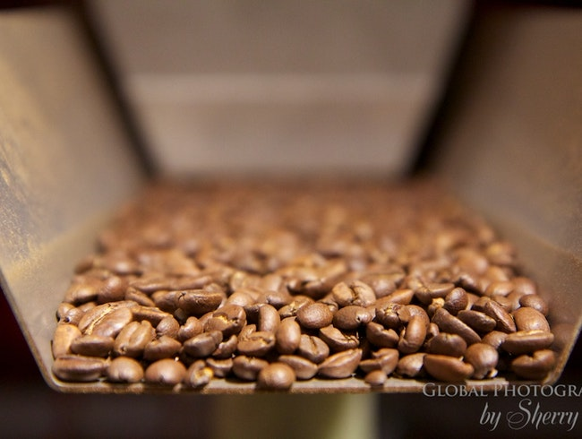 Full Steam Ahead - Nova Scotia Coffee Roasting