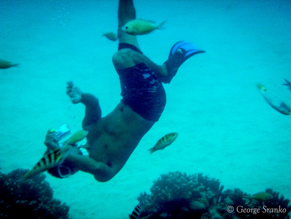 Excellent Snorkeling on the Reef in Saipan Papago  Northern Mariana Islands
