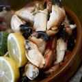 Mourne Seafood Bar Belfast  United Kingdom