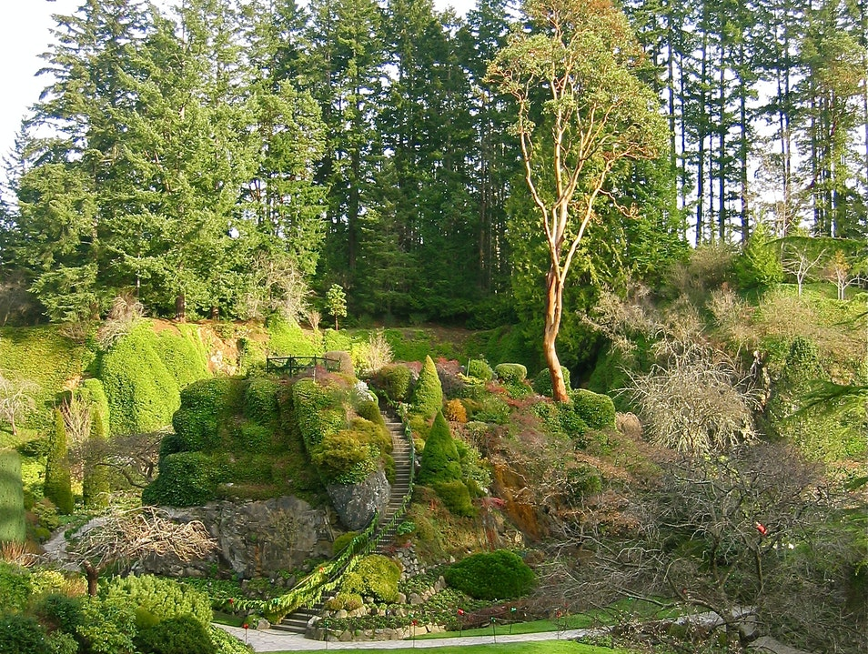 A Winter Visit To Butchart Gardens