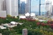 Urbs in horto:  City In A Garden (or Is It Garden In A City?) Chicago Illinois United States