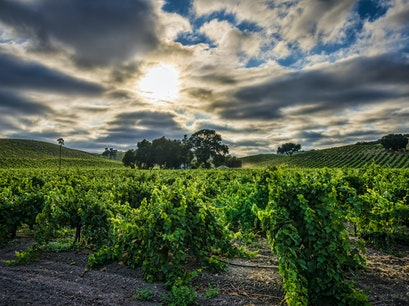 Niner Wine Estates Paso Robles California United States