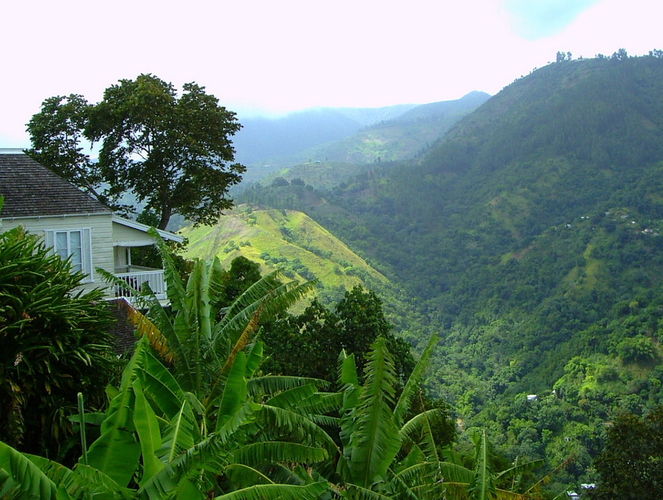 Stay or Dine at a Former Coffee Plantation   Jamaica