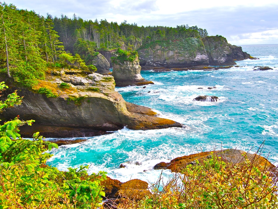Cape Flattery Trail Neah Bay Washington United States