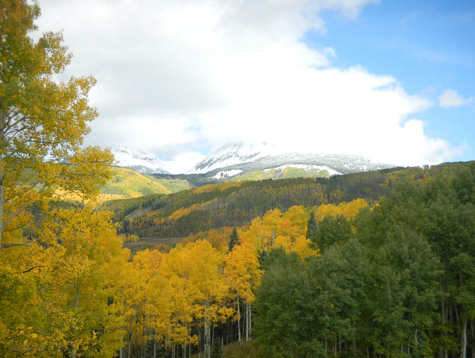 Fall Foliage in the Rockies Dolores Colorado United States