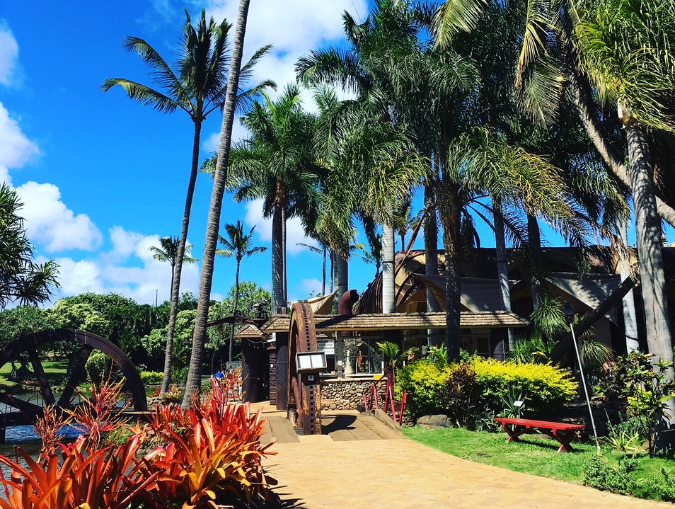 The Best Casual Midday Meal in Maui Wailuku Hawaii United States