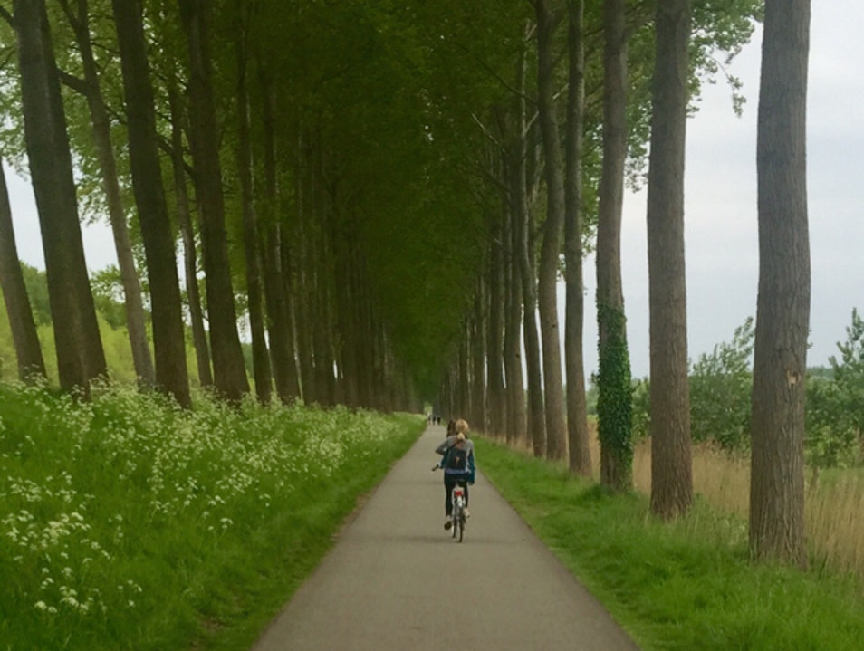 Bike Ride to Damme Damme  Belgium