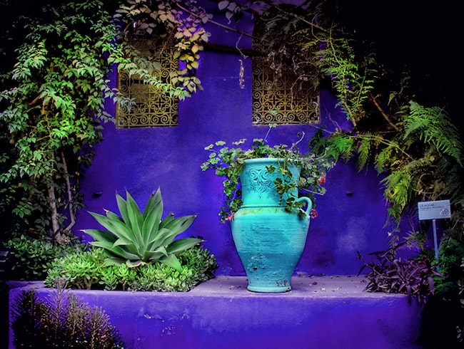 Jardin majorelle marrakech morocco marrakech for Jardin marrakech