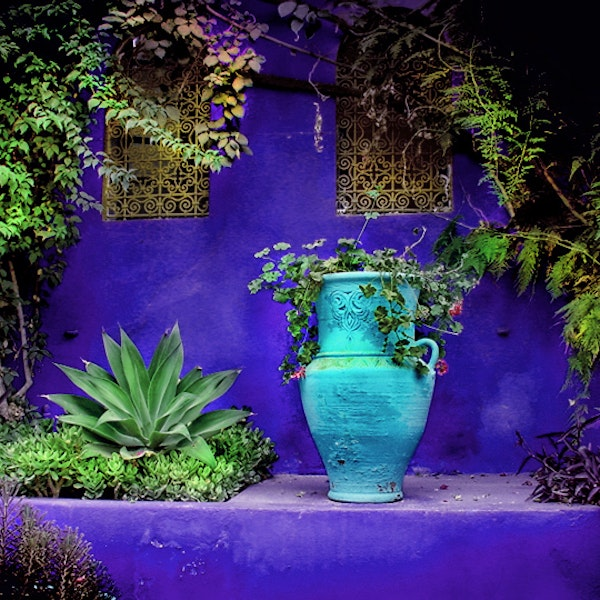 jardin majorelle marrakech morocco marrakech. Black Bedroom Furniture Sets. Home Design Ideas