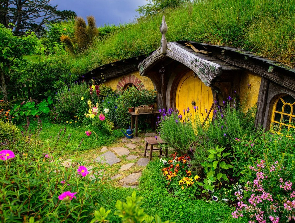 The Real Hobbiton: Alexander Farm  Matamata  New Zealand