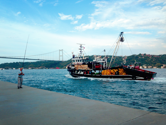 Strolling Along the Bosphorus