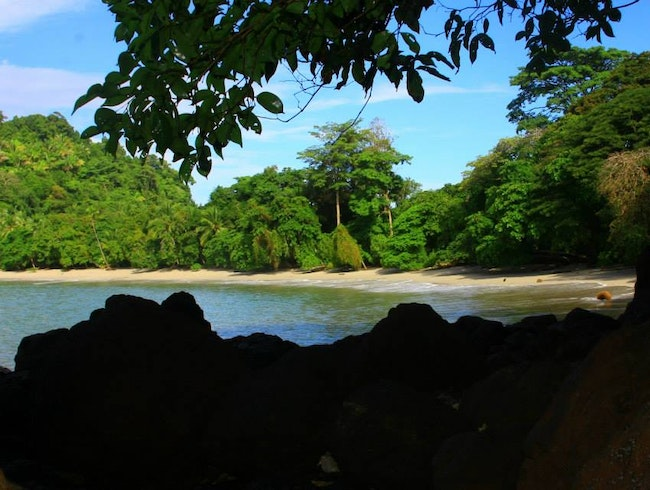 Manuel Antonio National Park Tour.