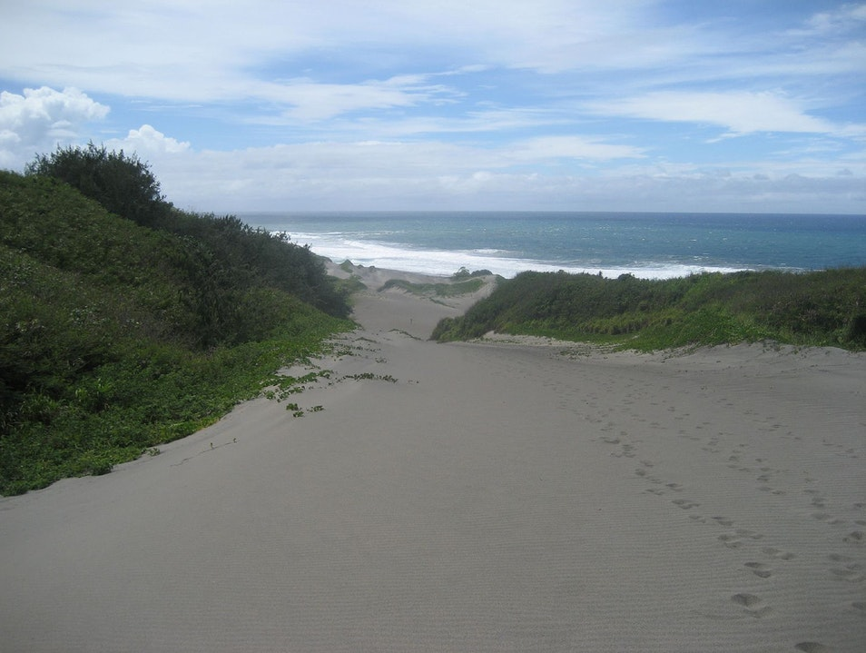 Dunes, Birds, Archeology and a Beautiful Beach Yadua  Fiji