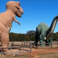 Dinosaur Valley State Park Glen Rose Texas United States