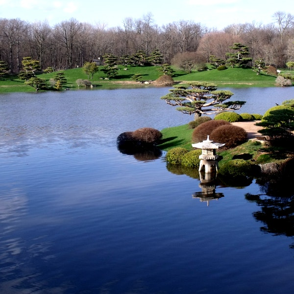 Chicago Botanic Garden Deerfield Afar