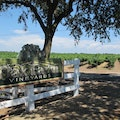 Oak Farm Vineyards Lodi California United States