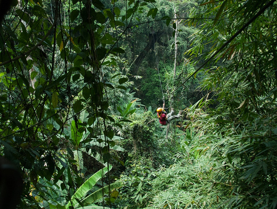 Zip Through The Jungle Si Phum  Thailand
