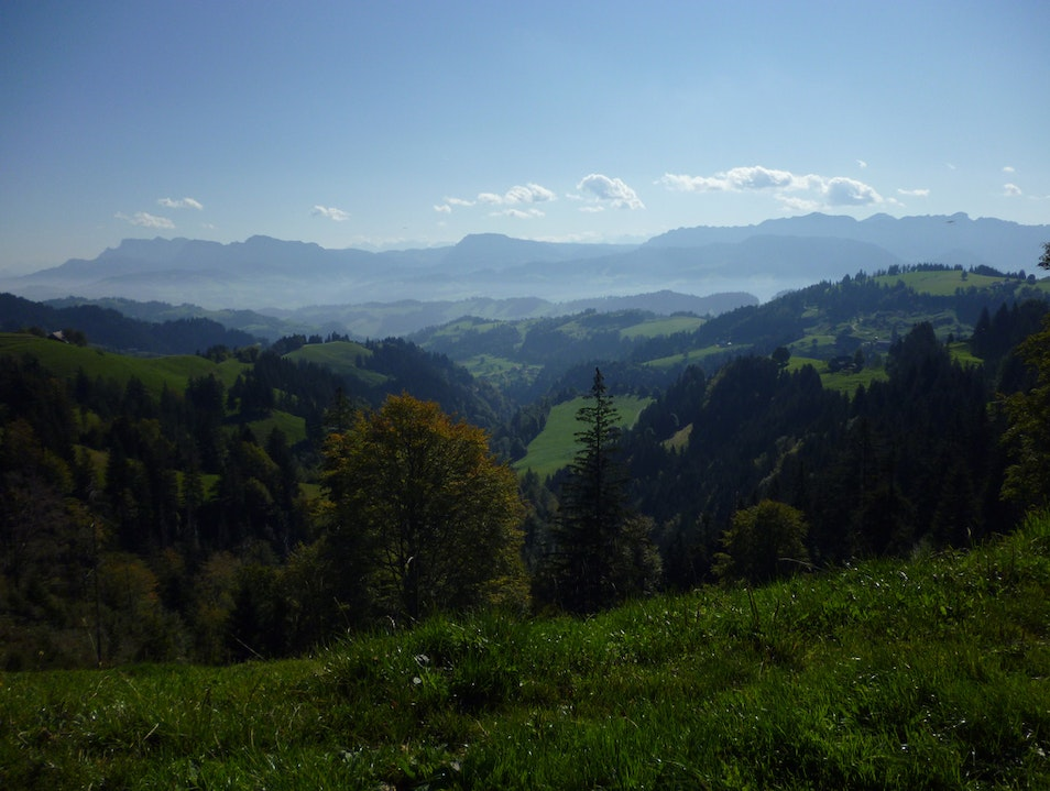 Sleep With the Cows in the Emmental Alps