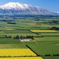 Canterbury Plains by Train Christchurch  New Zealand
