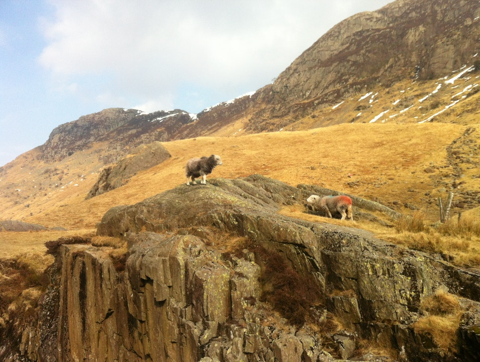 Walking and Scrambing in the Langstrath Valley Borrowdale  United Kingdom