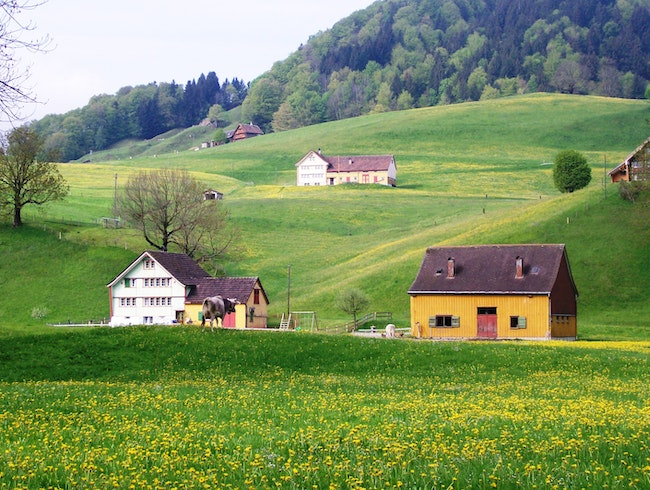 Winding Road in Appenzell