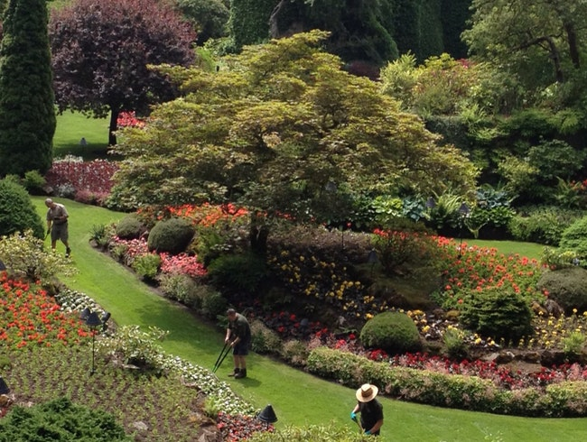 Butchart Gardens On A Summer Day